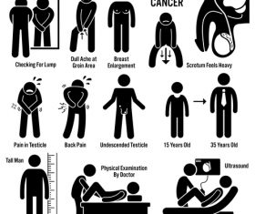 Testicular cancer medical icons vector