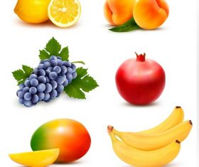 Big group of different fruit Icon Vector