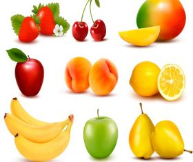 Big group of different fruit Vector.