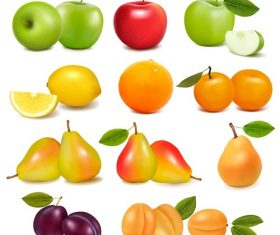 Different Fresh Fruits Icon Vector