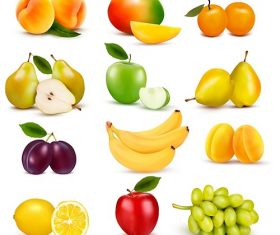 Different kinds of Fruit Icon Vector