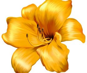 Gold Lily Flower Vector