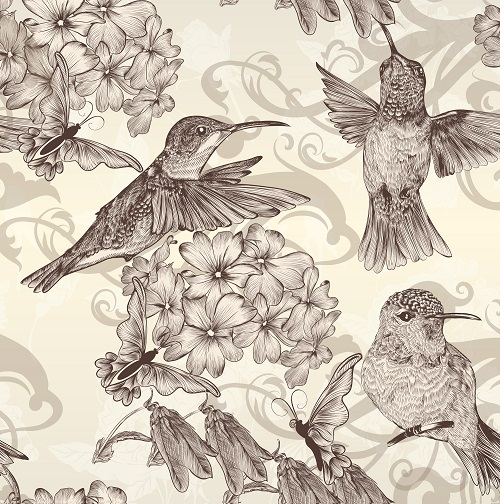 Humming birds Butterfly floral background vector