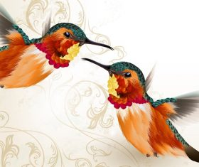 Two Humming birds swirl background vector