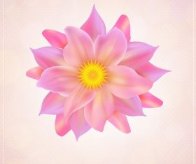 Beautiful Pink Flower Icon Background Vector