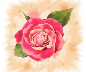 Big Rose with Paint Background Vector