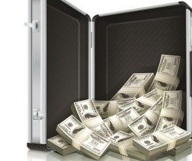 Cash Money in Case Icon Vector