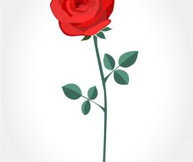 Red Rose Background Vector
