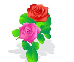 Red and Pink Roses with Stem Cartoon Vector
