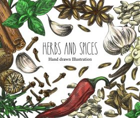 Herbs and Spices Banner Design Vector
