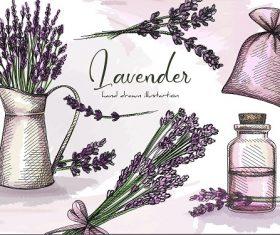 Lavender Design Banner Vector