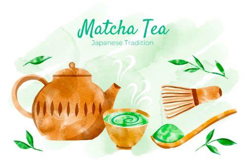 Matcha Tea Ingredients Vector