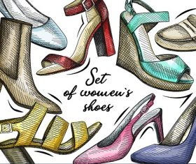 Set Of Womens Shoes Banner Vector