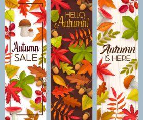 Autumn banner vector