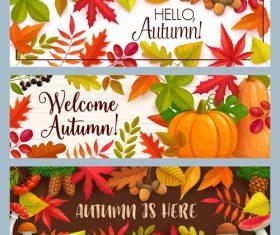Autumn is here banner vector