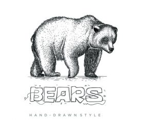 Bear hand drawing illustration black and white vector