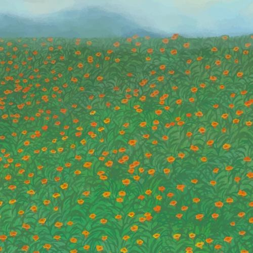 Blooming red poppy garden on the hill background vector