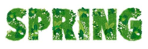 Font modeling blooming grass vector