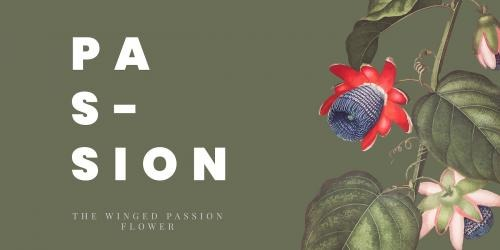 The winged passion flower banner vector