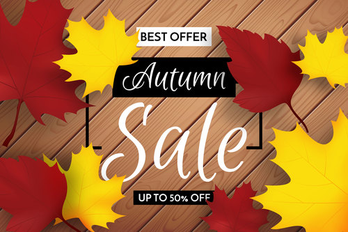 Best offer autumn leaves background vector