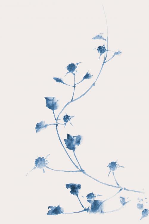 Blossoms illustration vector