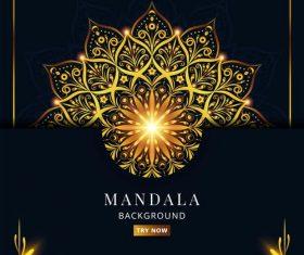 Decorative mandala pattern vector