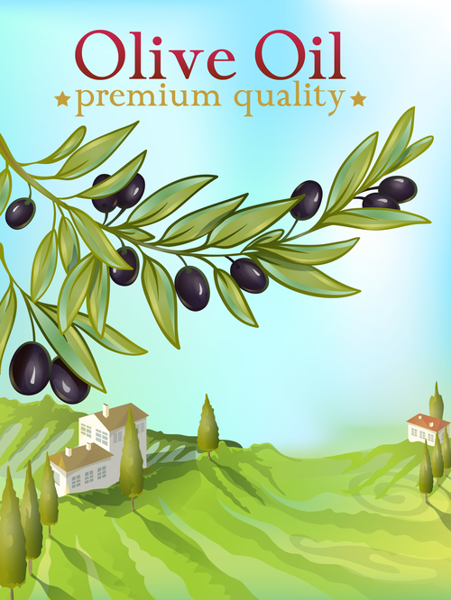 High quality olive producing area vector