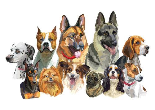 Human pal dog watercolor painting vector