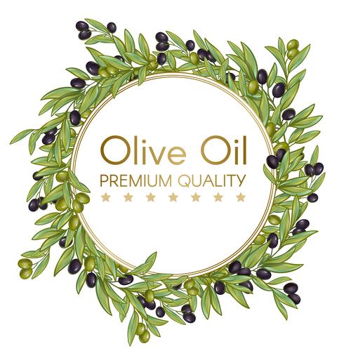 Illustration olive cover vector