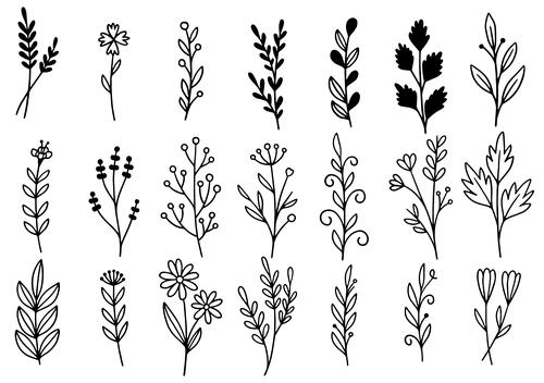 Line flower vector