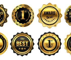 Luxury premium badges vector