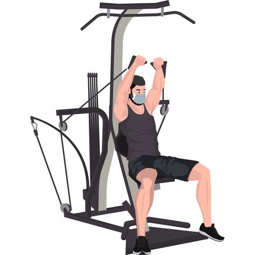 Male upper body exercise vector