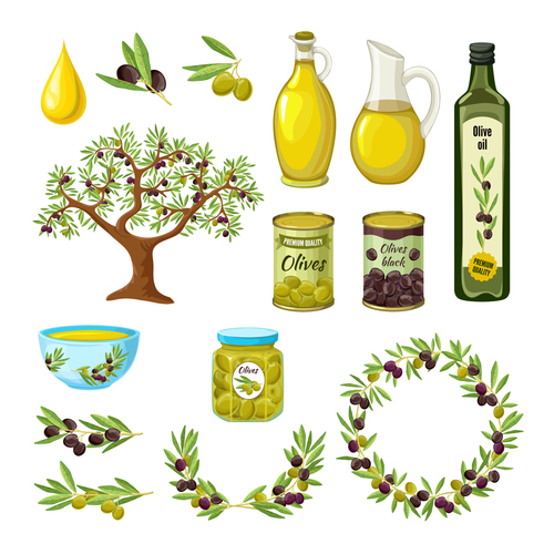 Olive product cover vector