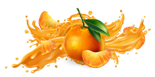 Oranges and orange juice realistic illustration vector