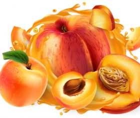 Peach and peach juice realistic illustration vector