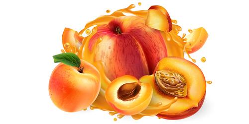 Peach and peach juice realistic illustration vector