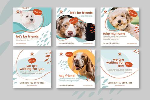 Pet card banner vector