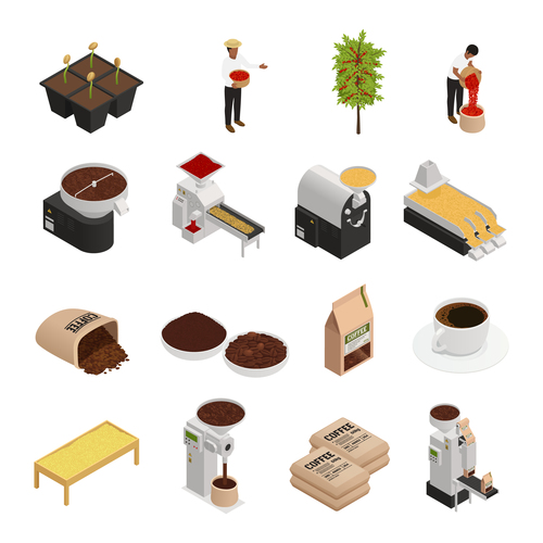 Processing plant coffee vector