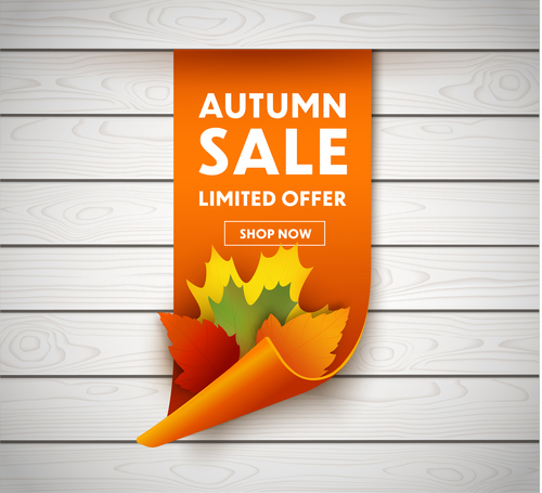 Roll up autumn leaves banner sale vector