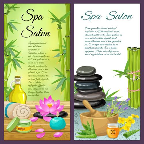 Roll up banner spa background vector
