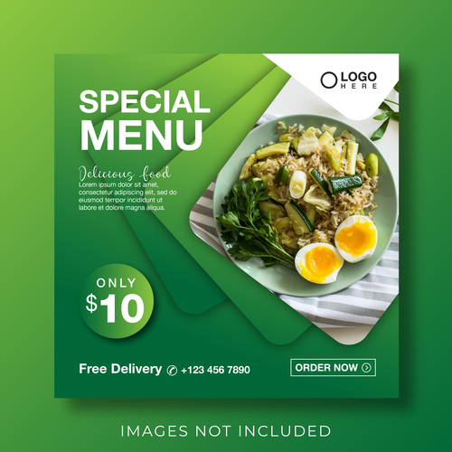 Vegetable fried rice cover vector