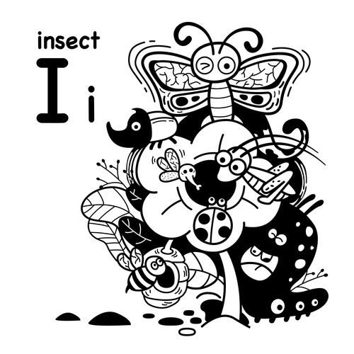 Animal literacy card insect illustrations vector