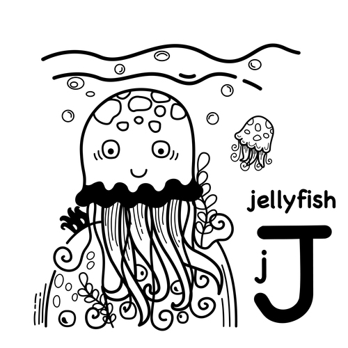 Animal literacy card jellyfish illustrations vector