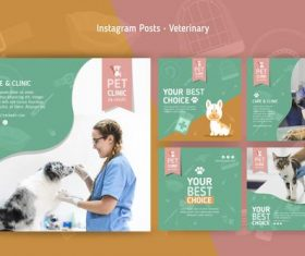 Banner veterinary clinic flyer vector