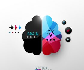 Brain concept abstract infographics vector