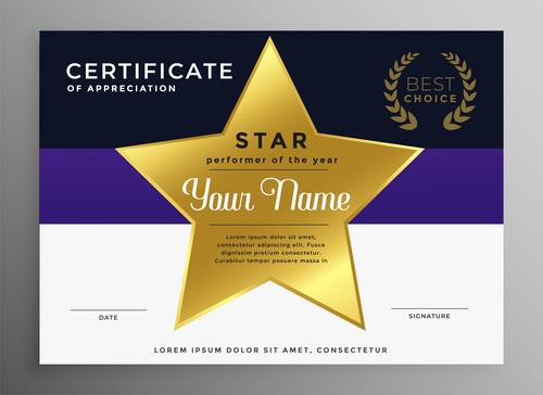 Brand certification certificate vector