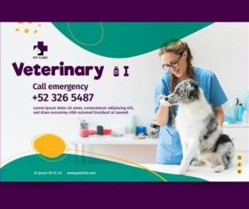 Caring for pets veterinarian vector