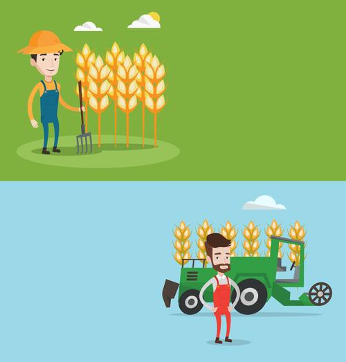 Crops flat design vector