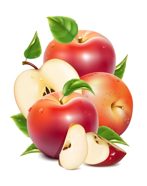 Cut apple and fresh apple vector