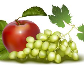 Drunk golden fragrance grape and apple vector